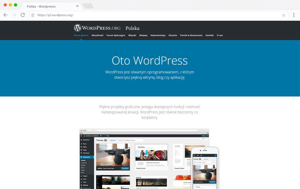 pozycjonowanie WordPress